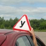 запретить автошколы